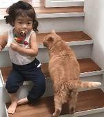 絢斗くん2歳とチャコ